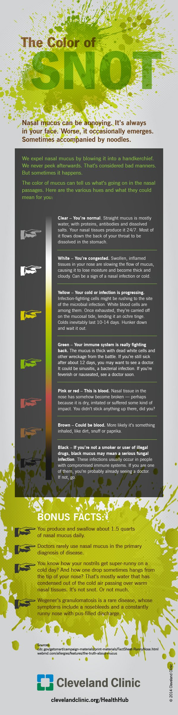 Infographic what does the colour of your snot say about your health 14 hhb 1378 mucus infographic biocorpaavc Images