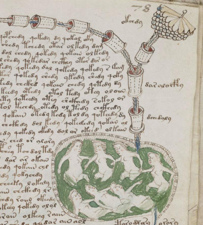 manuscript 4