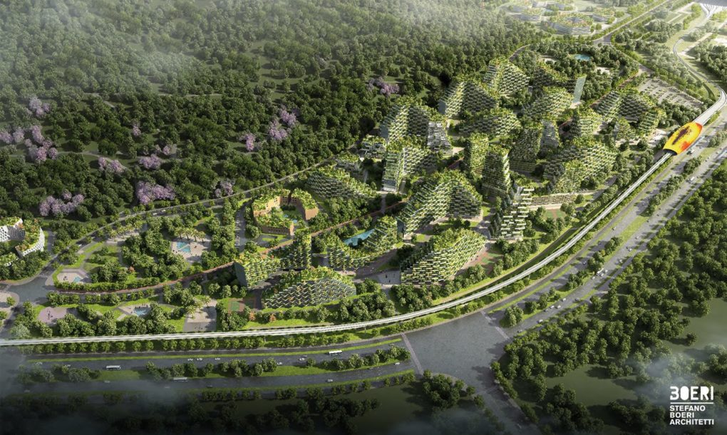forest city 6