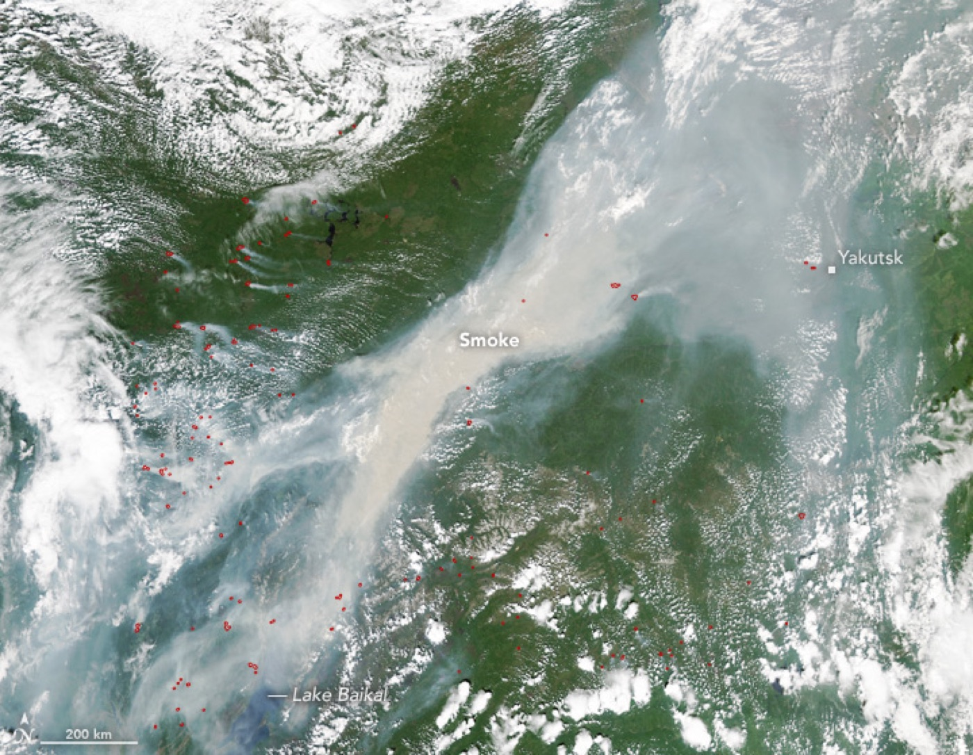 The area of ​​forest fire in Siberia increased 4 times per day 05/26/2017 59