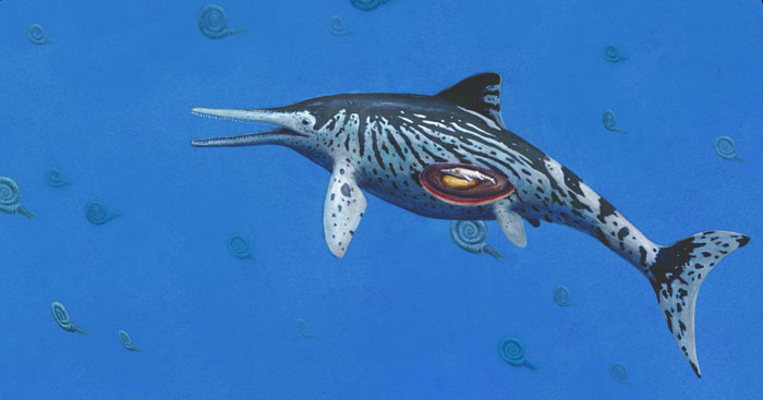 836 Ichthyosaurus 2