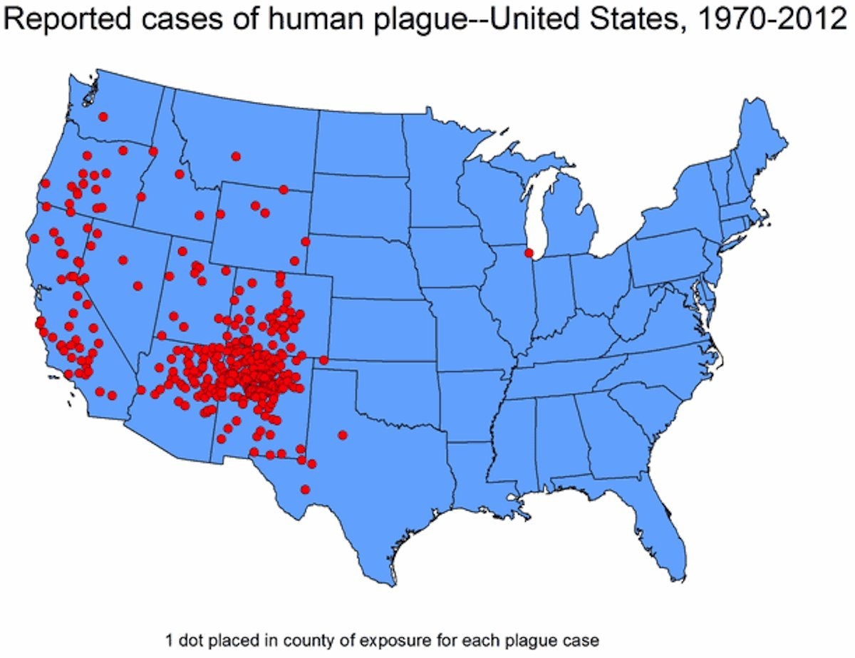 plague cases us map cdc