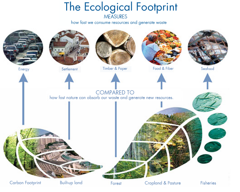 How the global footprint is calculated