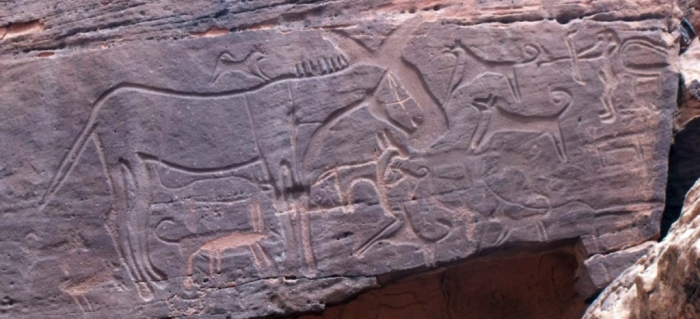 rock art dogs hunting equid