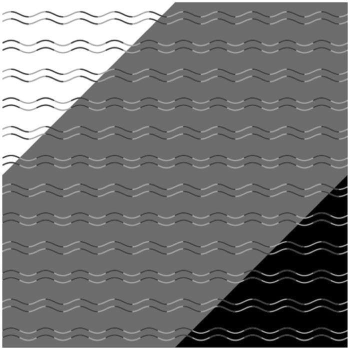 178 curvature blindness illusion 1