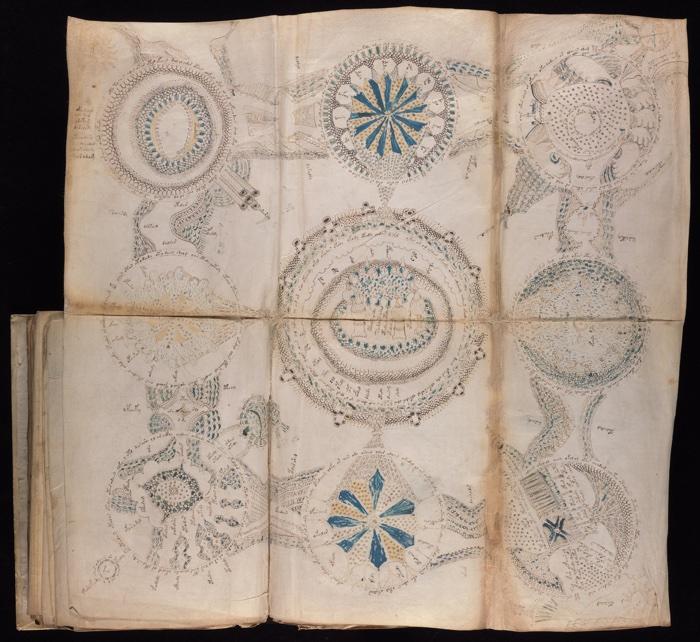 825 voynich manuscript 4
