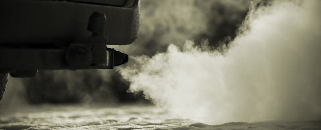 German Carmakers Exposed Monkeys And Humans to Diesel Fumes in Secret Tests
