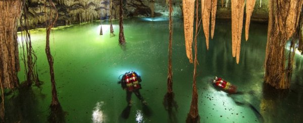 Divers found the world's largest underwater cave, and it's full of Maya secrets