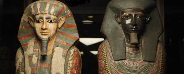 "Ancient DNA reveals surprise about 4,000-year-old Egyptian mummy ""brothers"""