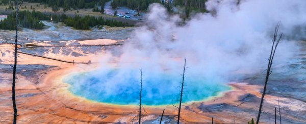 Swarm of over 200 earthquakes detected at Yellowstone supervolcano