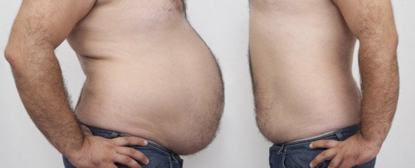 This is where body fat actually goes when you lose weight