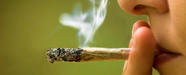A mysterious syndrome in which marijuana users become violently ill is worrying researchers
