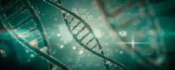 If Genes Dont Turn Off Brains Wiring >> Stress In Early Childhood Could Make The Brain S Dna Remap