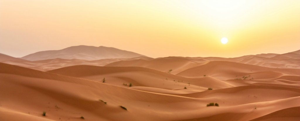 The Sahara Desert Has Grown by 10%. Here's What You Need to Know