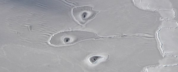 Even NASA isn't sure what's making these bizarre circles in the Arctic
