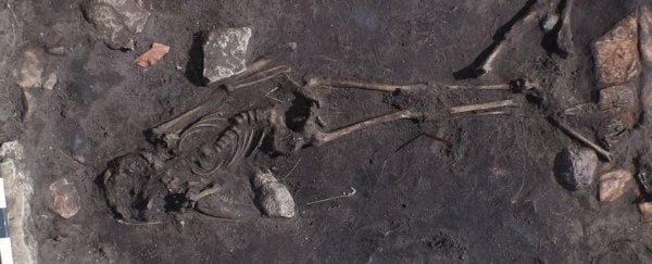 Archaeologists have found a mysterious bloody massacre from 5th century Sweden