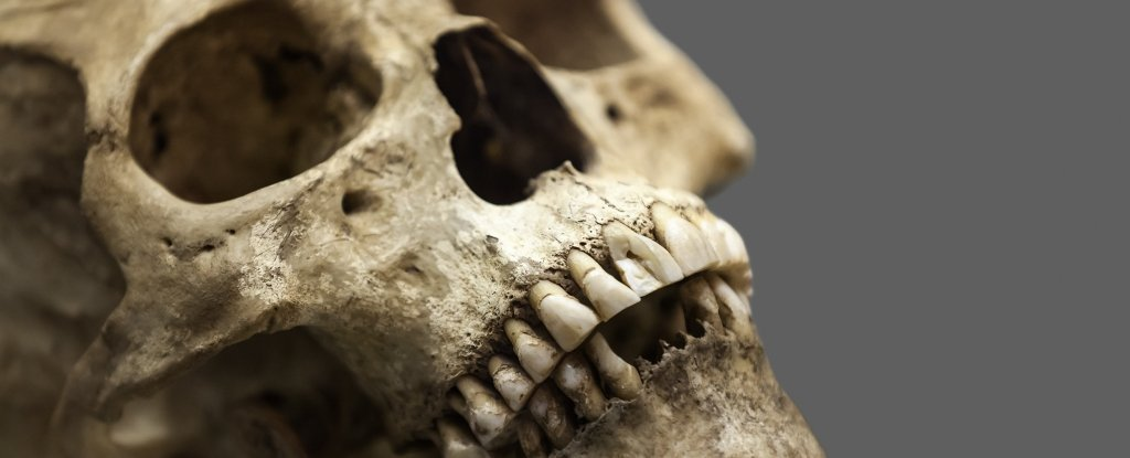 This Common Viral Disease Has Plagued Humanity Thousands of Years Longer Than We Thought