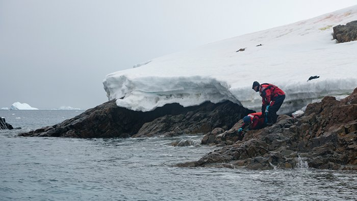 antarct 2