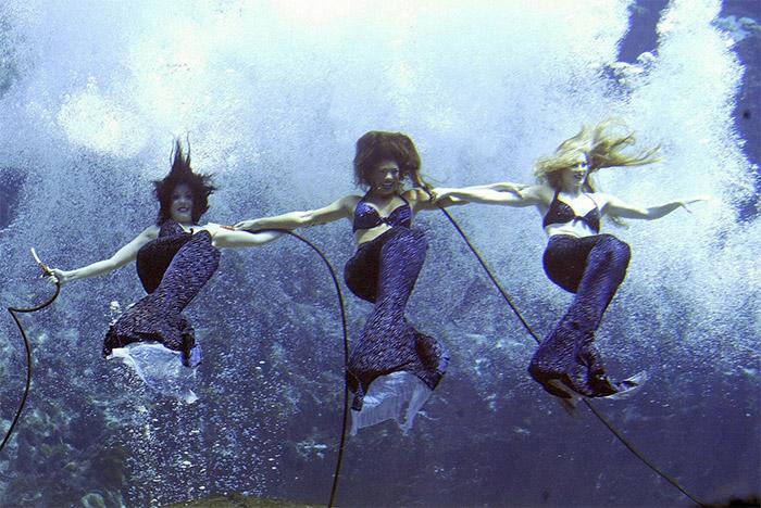 mermaids wapo