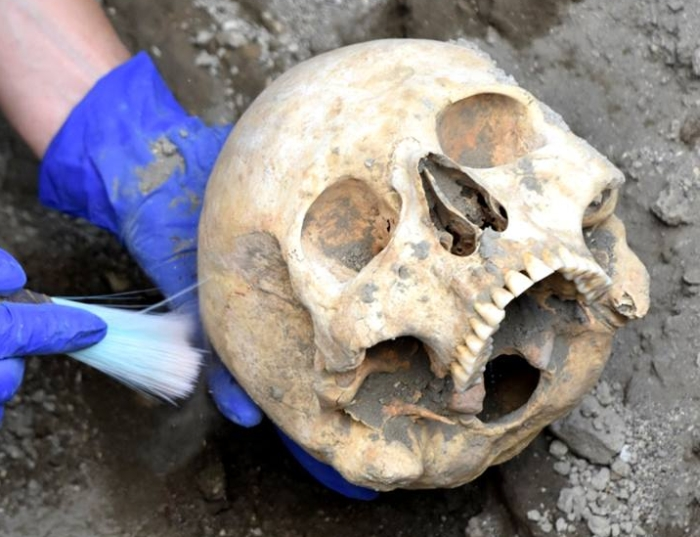 pompeii skull 1 700