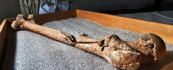 "Grisly discovery of a surgeon's ""limb pit"" reveals the horrors of the Civil War"