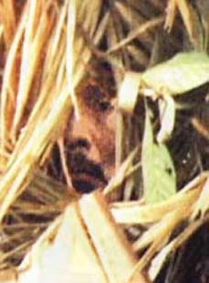 amazon last tribe man 3