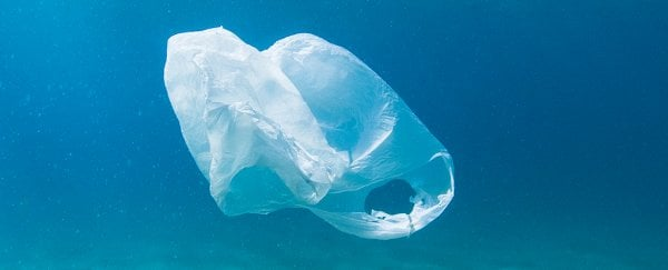 We're drowning our world in plastic - here's some tips for cleaning up