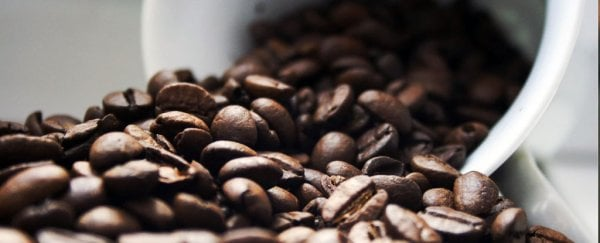 Even just the smell of coffee could actually perk up your brain, study shows