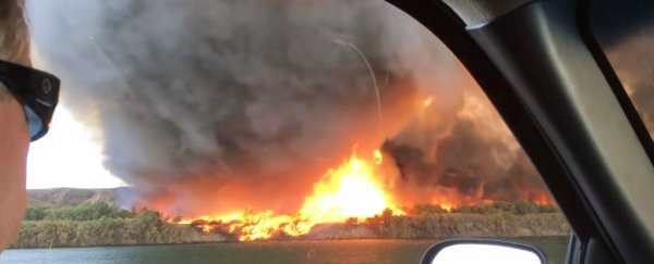 A rare and epic 'firenado' was caught on video over the weekend. Here's how they form