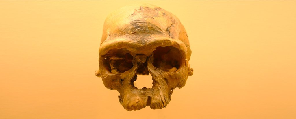 The Story of Human Origins in Africa Is Changing in a Way We Never Expected