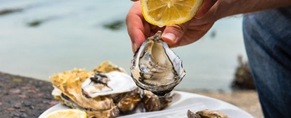 A flesh-eating bacterial infection killed a man in Florida because he ate oysters