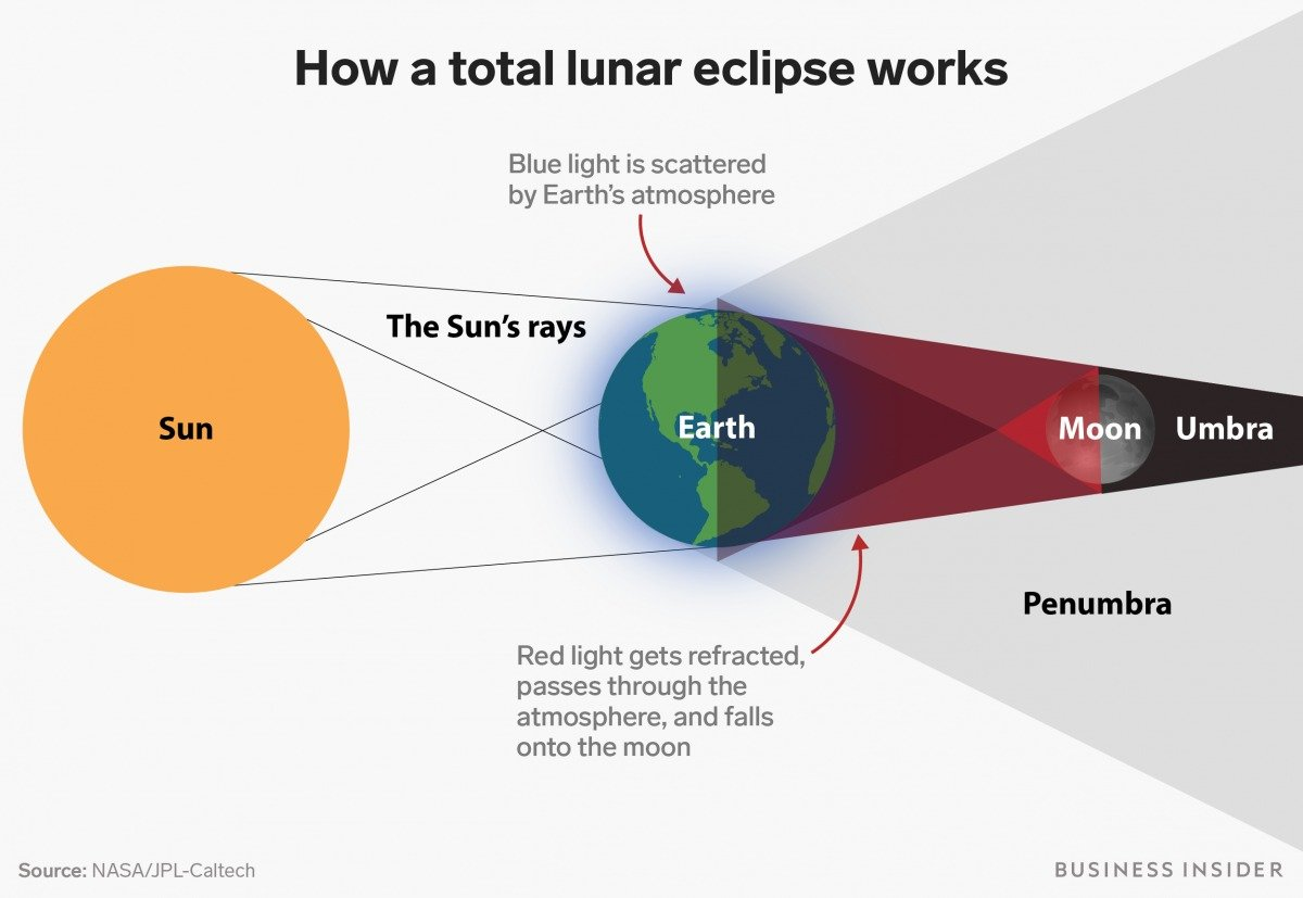 what lunar eclipse blood moon looks like