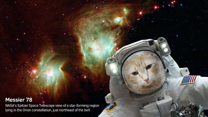 NASA selfies app cat messier 700