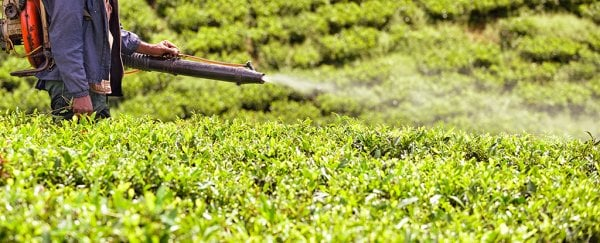 An infamous pesticide was just linked to childrens' risk of developing autism