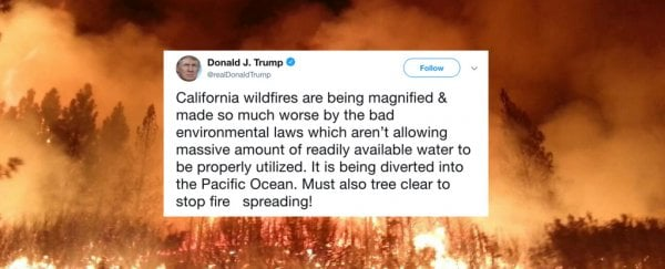 Image result for Trump California fire tweet