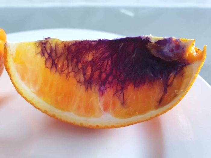 025 orange turned purple australia 3