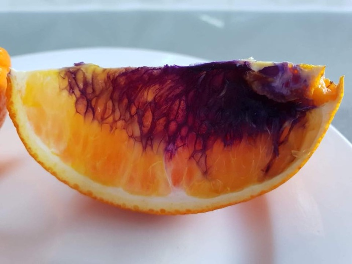 036 orange turned purple australia 3