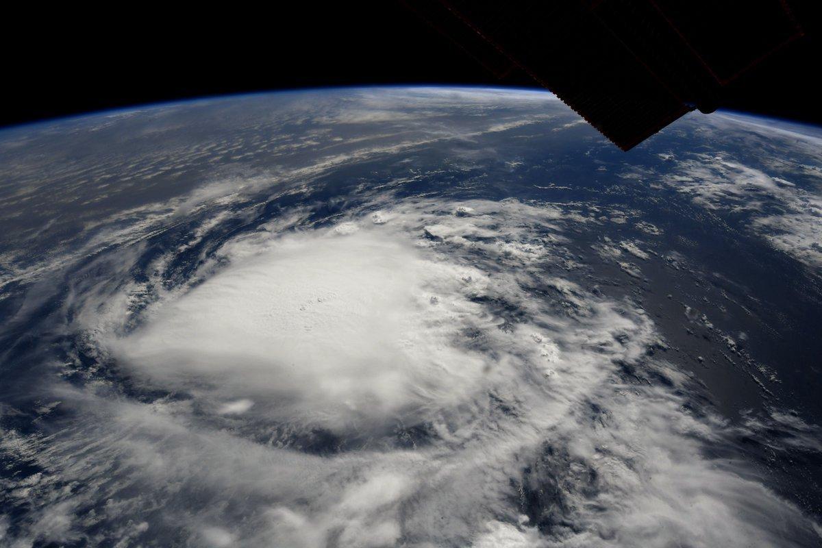 (Richard Arnold/NASA/NHC/Business Insider)
