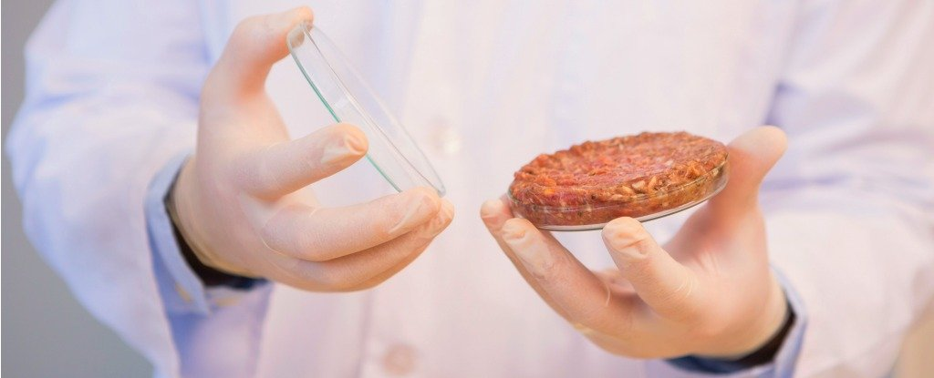 There's a Push For Lab-Grown Meat to Get a New Name. Here's The Alternative
