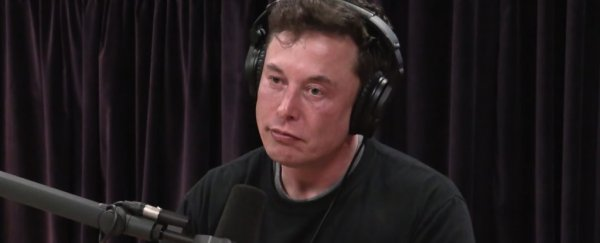"Elon Musk warns we're living through the ""dumbest experiment in human history"""