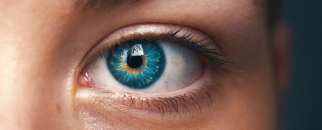 Scientists Have Detected an Entirely New Visual Phenomenon in The Human Eye