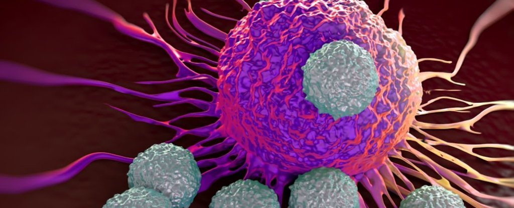 Here's The Groundbreaking Cancer Research That Just Won The 2018 Nobel Prize in Medicine