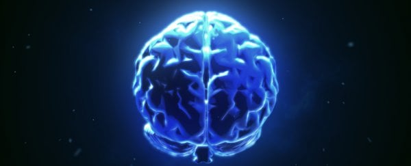 Scientists Have Connected The Brains of 3 People, Enabling Them to ...