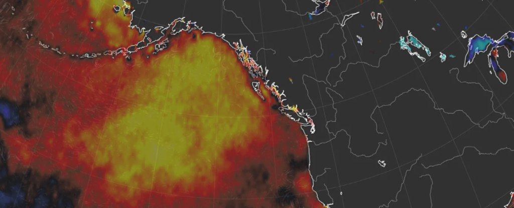 The Massive Anomaly 'Blob' in The Pacific Is Back And Might Bring Even More Strange Weather