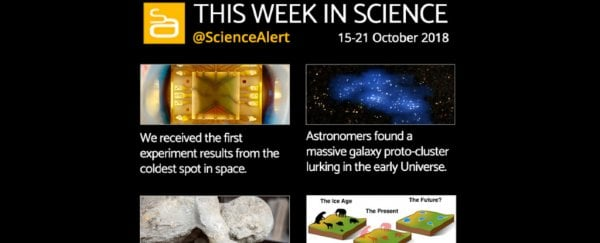 Infographic: The Science News You Need to Know This Week