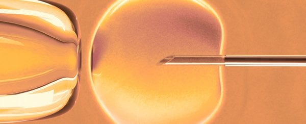 There's a Surprising Link Between IVF And Intellectual
