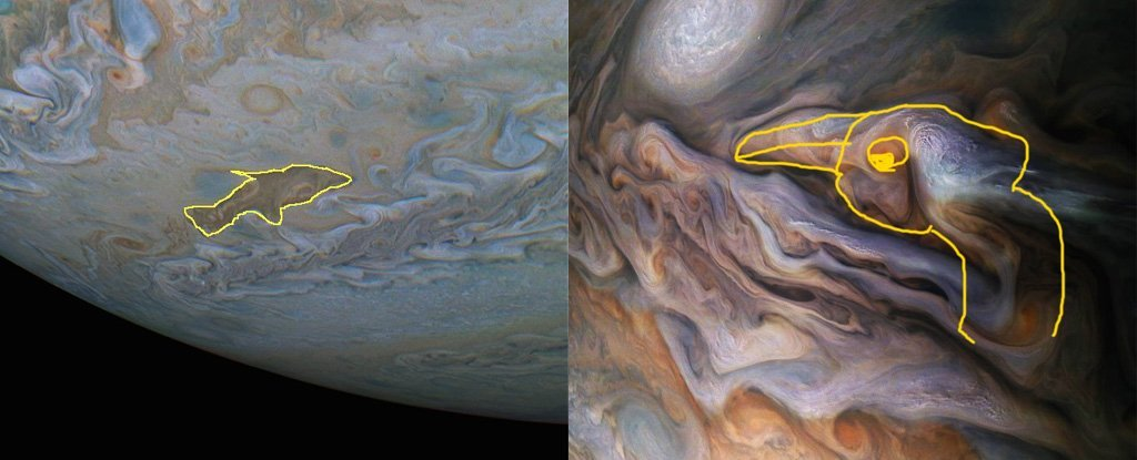 This Jupiter Cloud Kinda Looks Like a Dolphin, So We Found ...