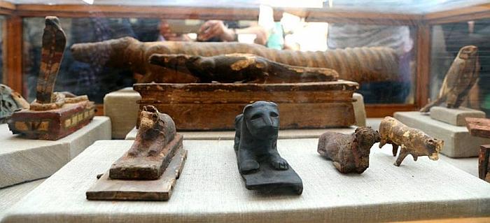 saqqara mummified snakes crocs
