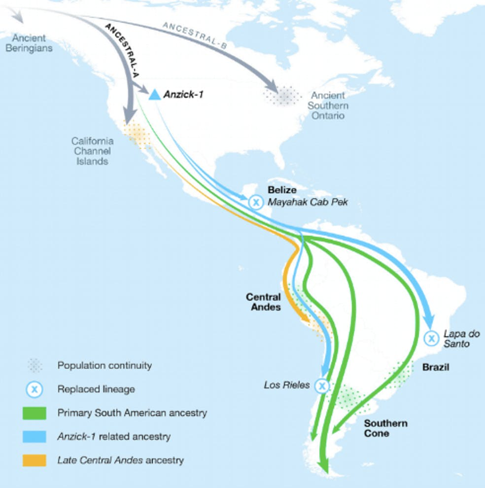 the majority of central and south american ancestry arrived from at least three different streams of