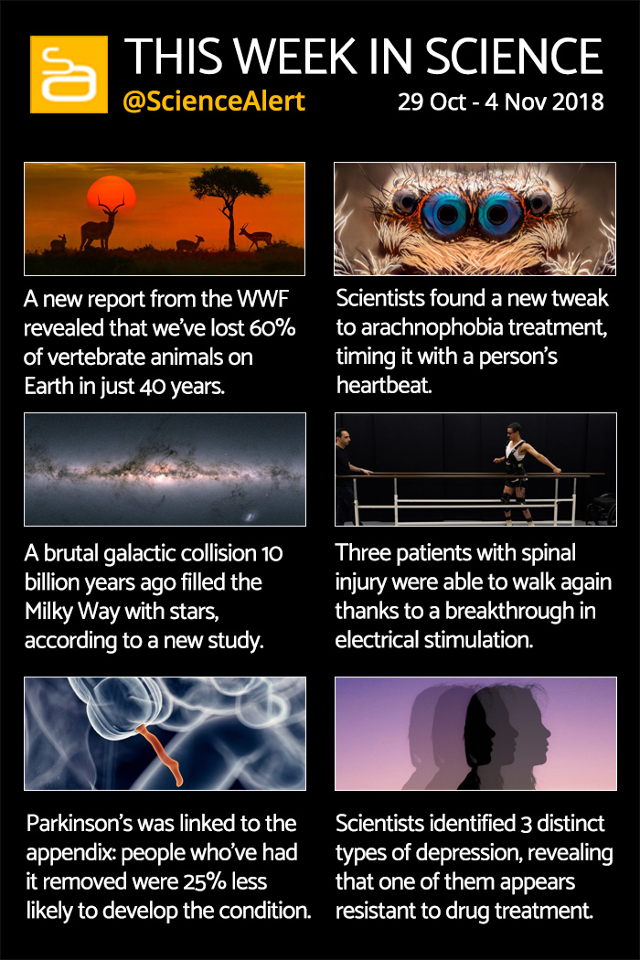 this week in science 29 oct 4 nov
